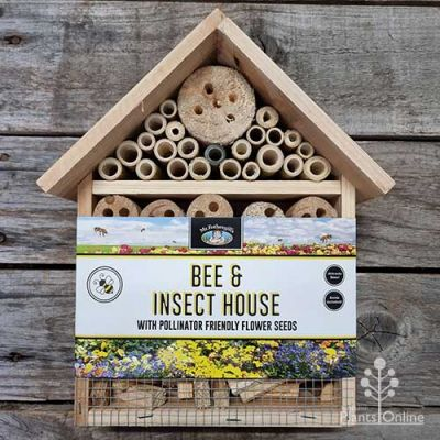 Bee & Insect House - Large