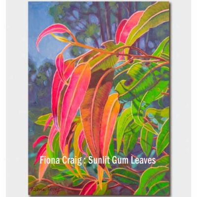 Greetings card - Sunlit Gum Leaves