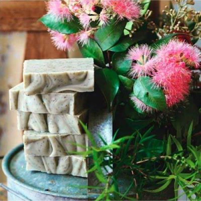 tea tree and green clay soap